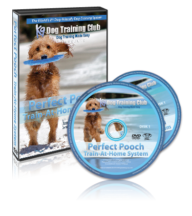Perfect Pooch Dog Trainer Review