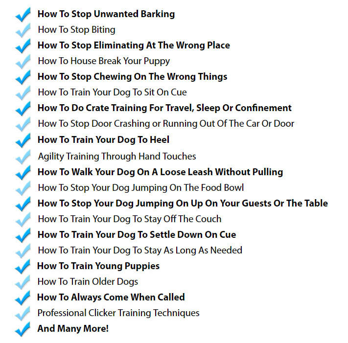 Dog Training Course Review